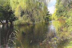 Jan Goodwin  Spring Flood